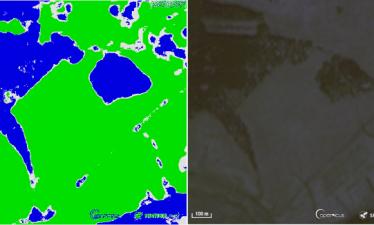 Искусственный интеллект определит границы лесов по космическим фотографиям