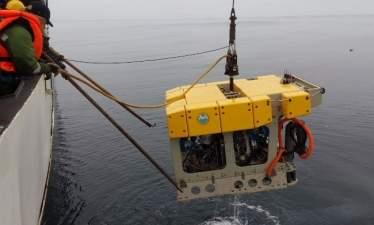 В ДВФУ создадут первого в России полностью автономного подводного робота с манипулятором
