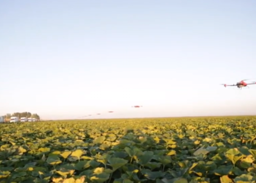 """Беспилотники: Китайские дроны """"выжигают"""" паразитов"""