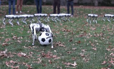 Компания роботов Mini Cheetah играет в футбол в кампусе MIT