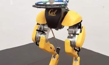Двуногий робот Cassie Cal научился чеканить мяч
