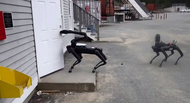 Полиция штата Массачусетс испытывает собакоподобного робота Spot от Boston Dynamics